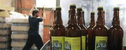 La Piautre, bière bio angevine fabriqué à la Ménitré