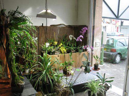 Growshop et culture d'intérieur, toutes les bonnes adresses autours de la ville d'Angers